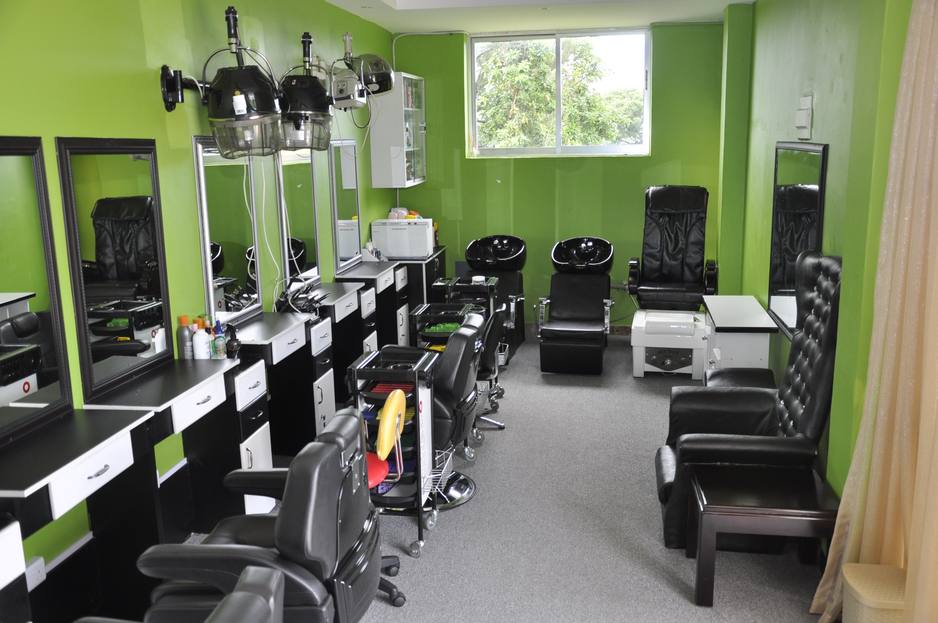 INNER VIEW OF THE SALON